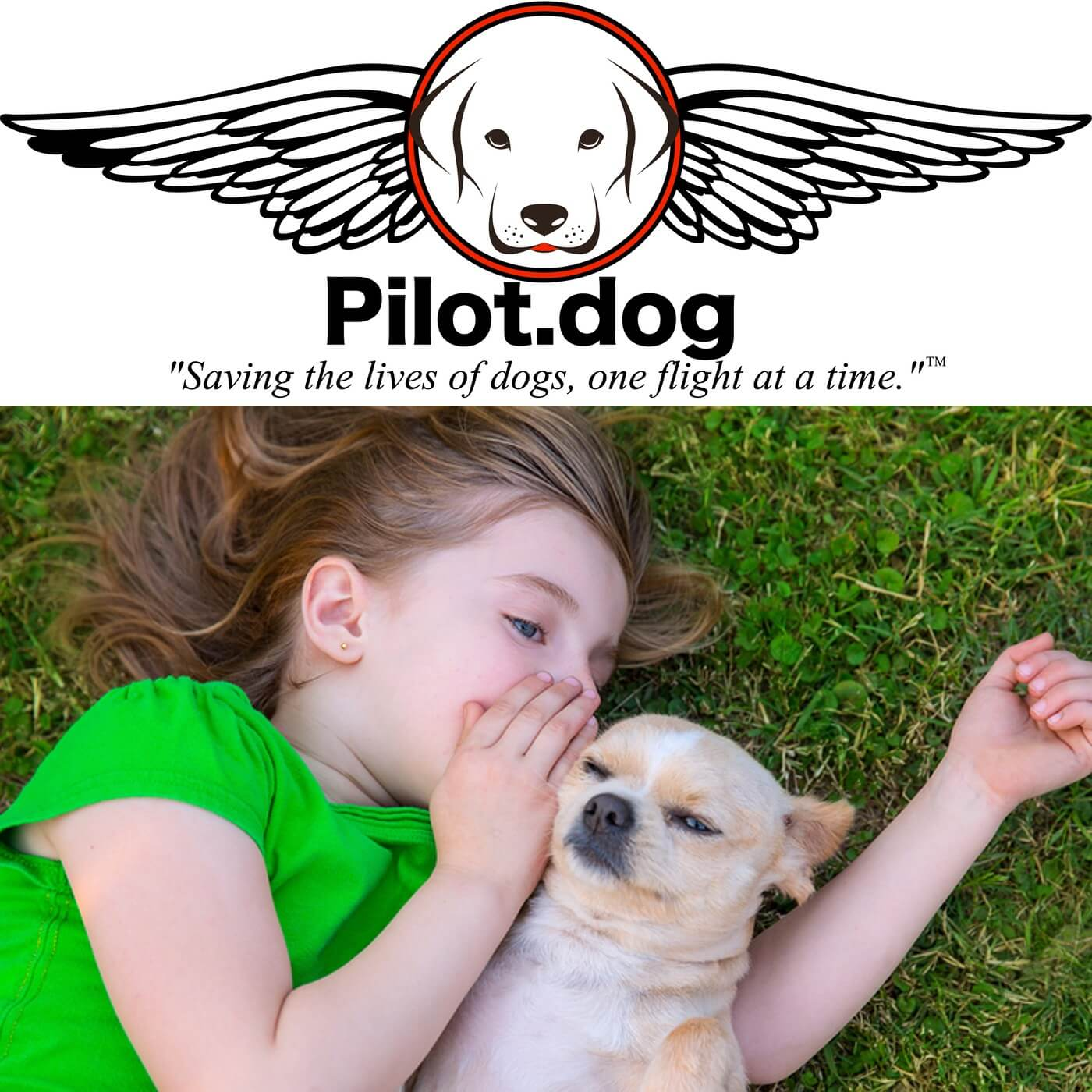 Dog Rescue Pilot Podcast