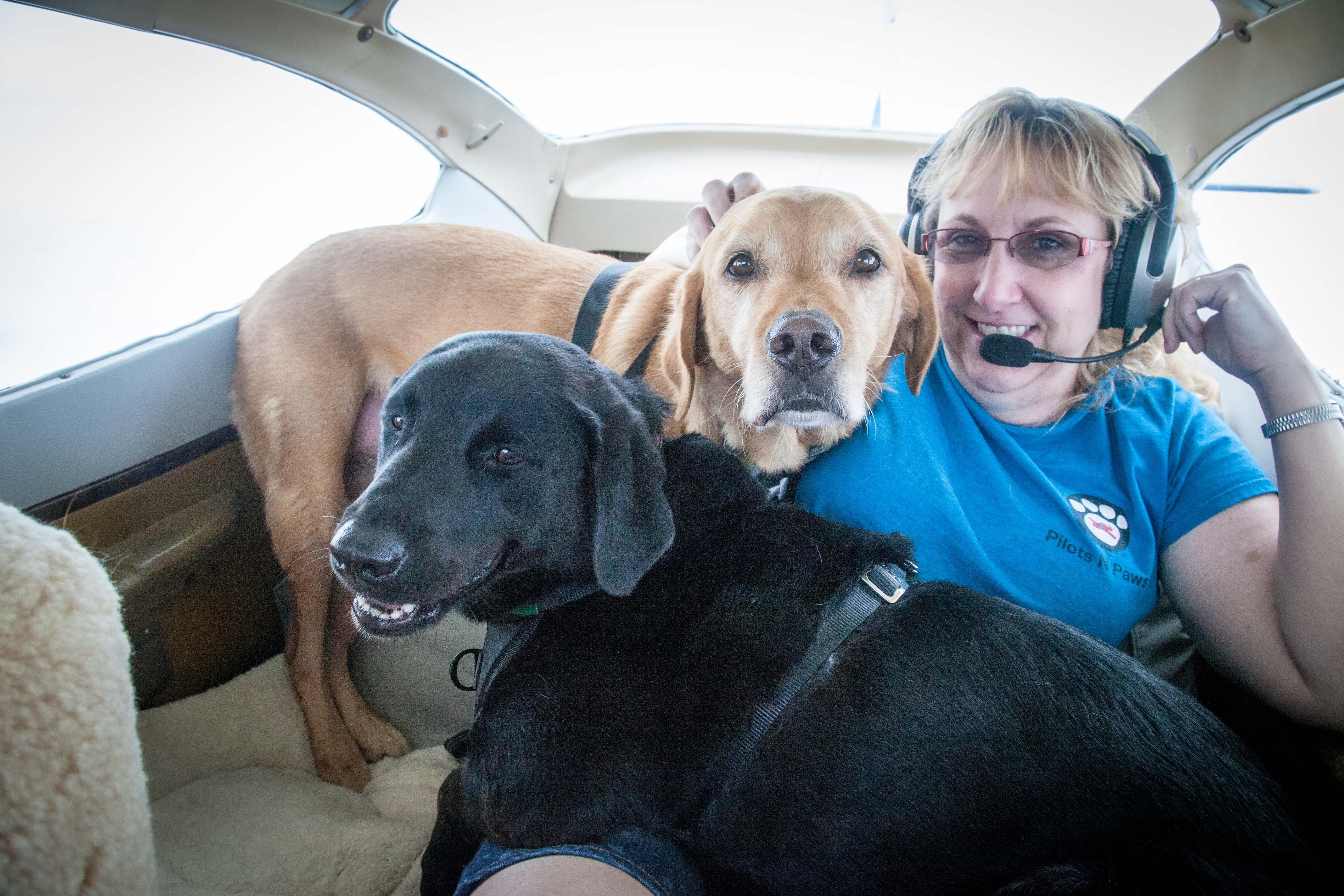 Tonto, Ranger, and Pam in Flight Pilot.dog