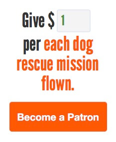 Help support Pilot.dog. Click here.