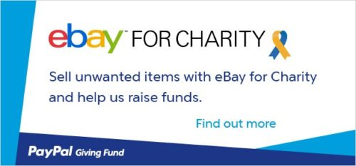 ebayforcharity-large