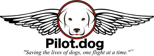 pilotdoglogoslogan