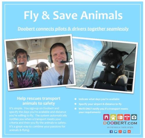 Doobert Pilots