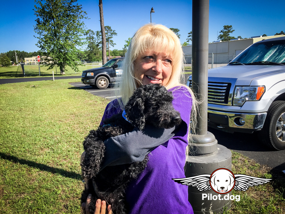 Pet for a Vet Dog Rescue Flight Helps Save Four Dogs -